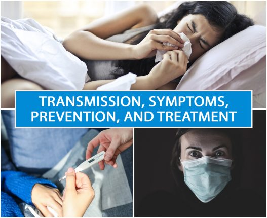 Transmission, Symptoms, Prevention, and Treatment
